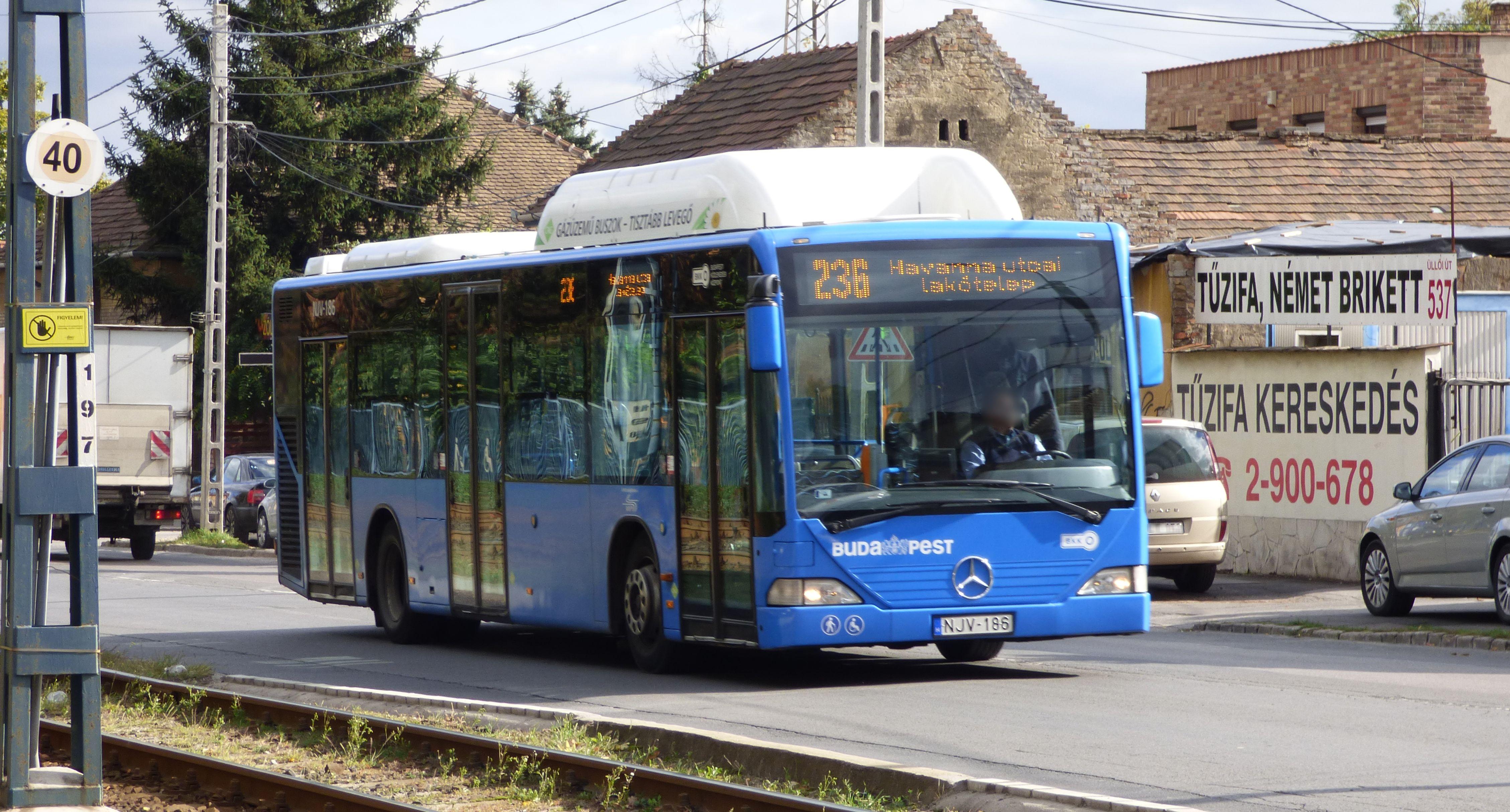 File:236-os busz (NJV-186).jpg