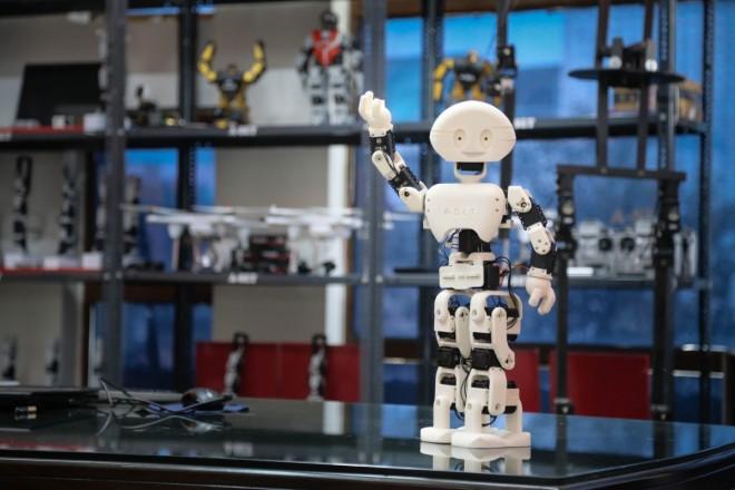 Manav (robot) - Wikipedia