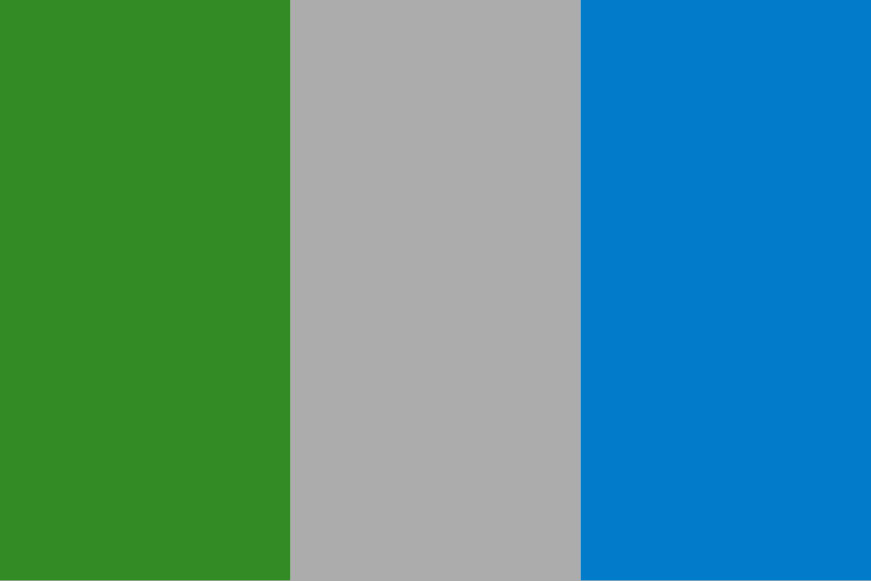 Solicitud de Registro de Asociaciones ADIC_bandera