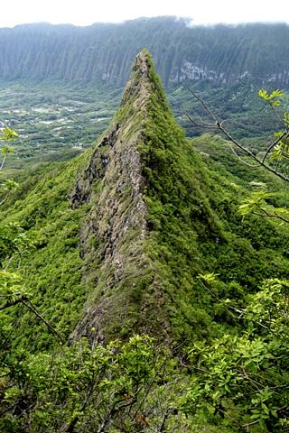 Olomana (mountain) - Wikipedia
