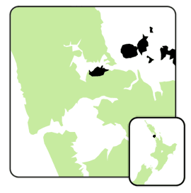Auckland central electorate 2008.png