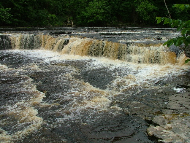 Aysgarth upper falls - geograph.org.uk - 30955