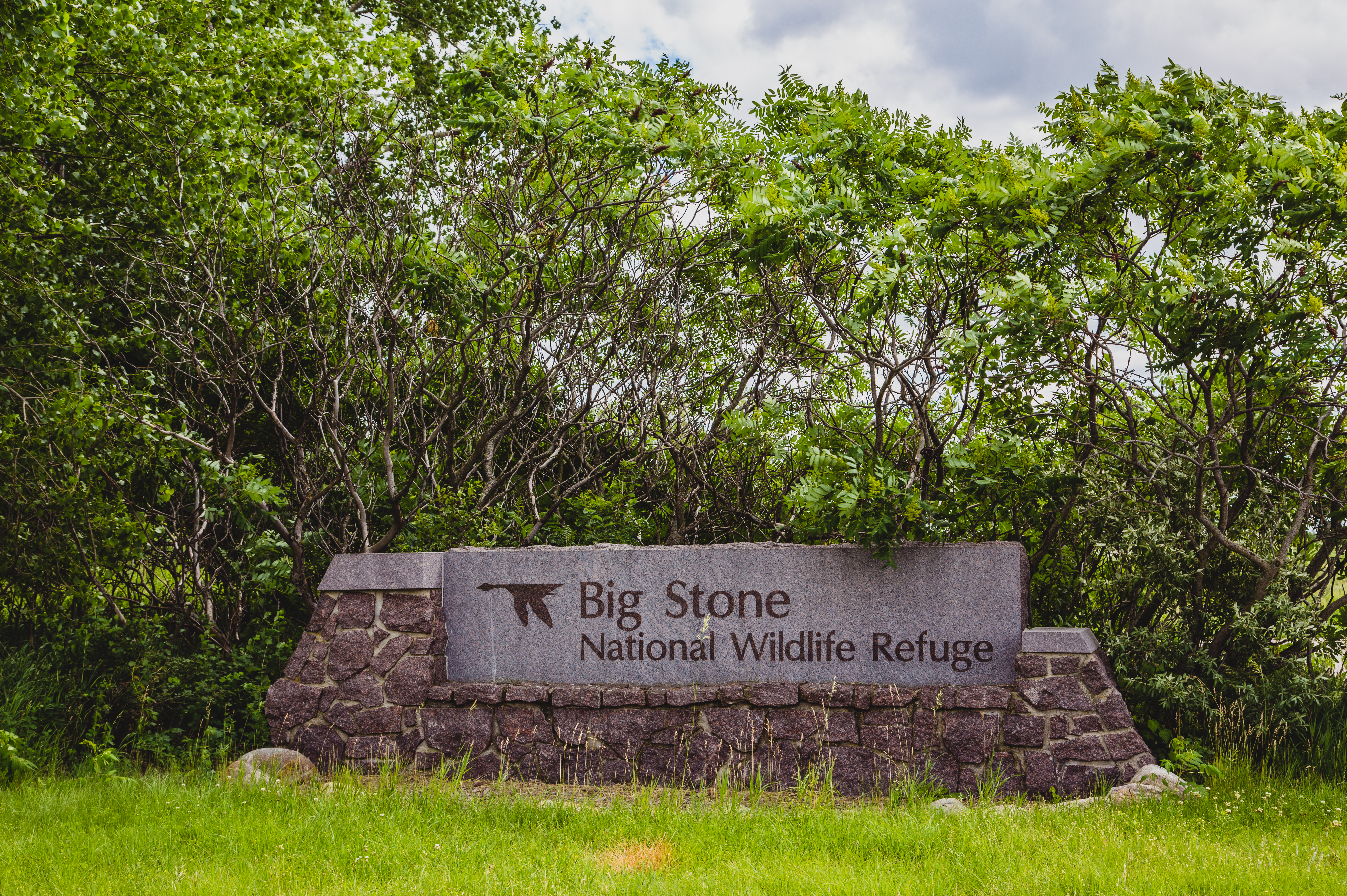 Big Stone National Wildlife Refuge - Wikipedia