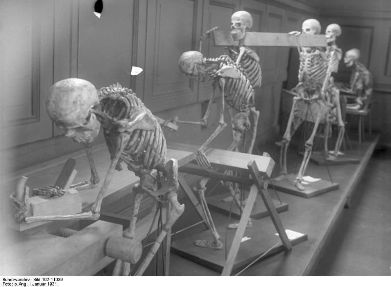 Bundesarchiv Bild 102-11039, Berlin, Arbeitsschutz-Museum