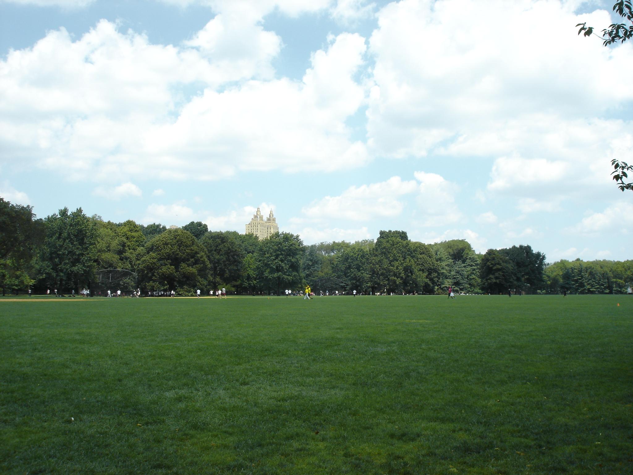 Central Park Video Tour