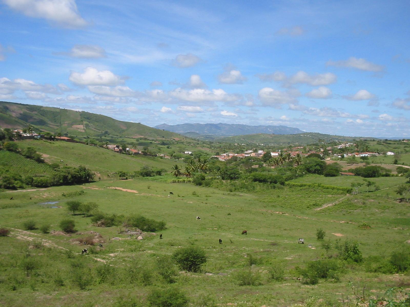 File:Cumaru-Zona-rural.jpg