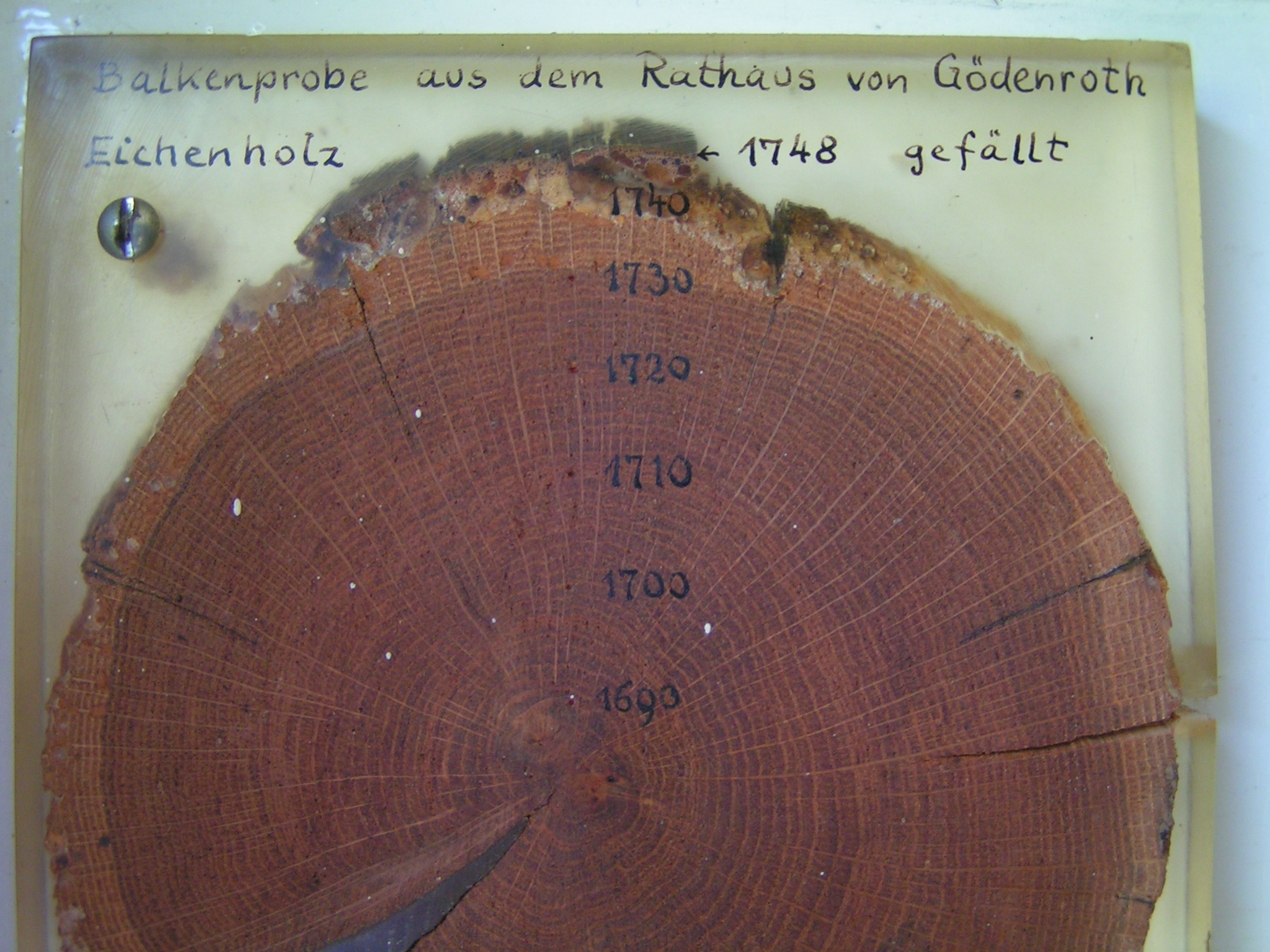 Dendrochronology dating definition