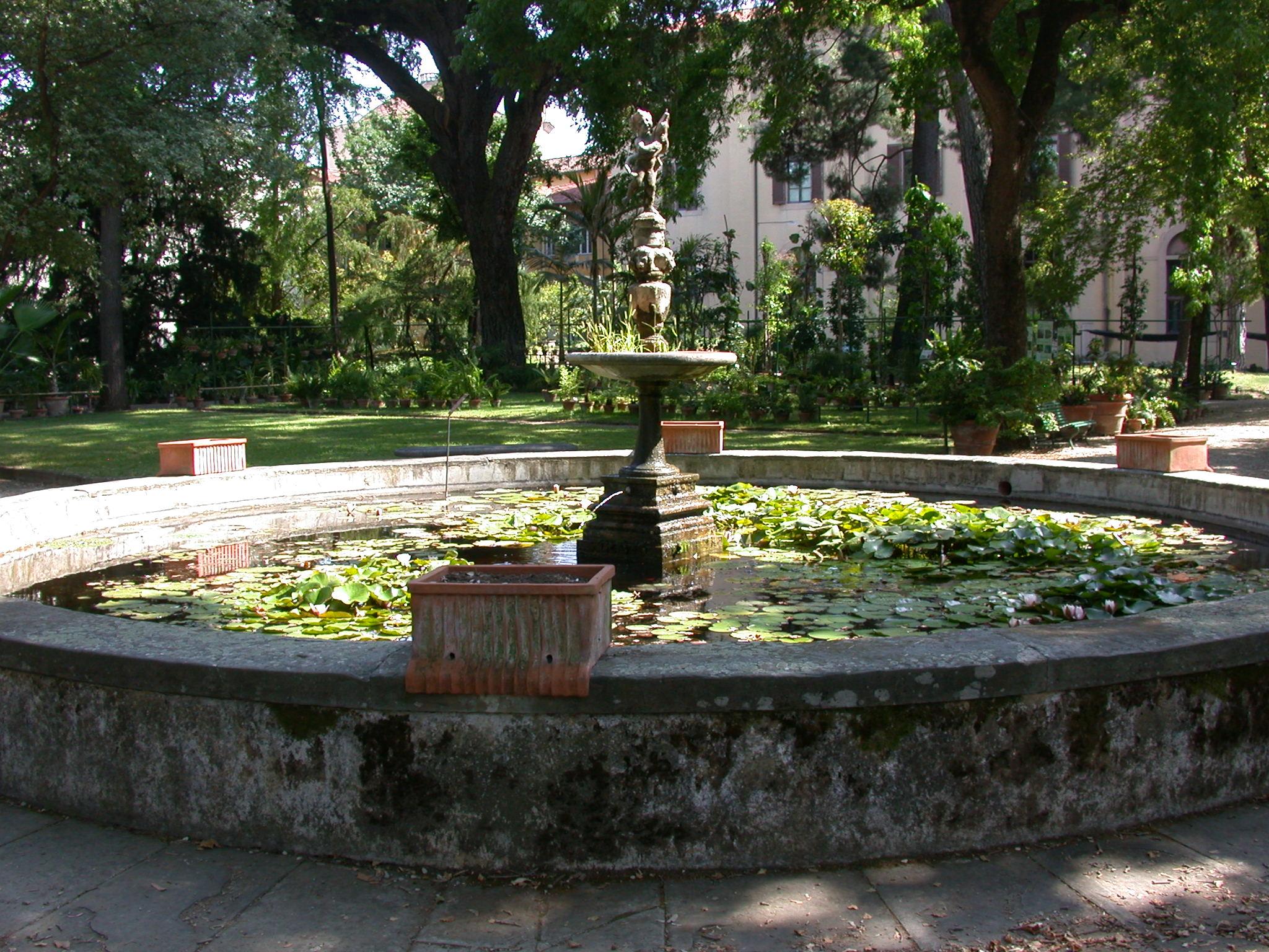 File:firenze giardino dei semplici fontana.jpg wikipedia