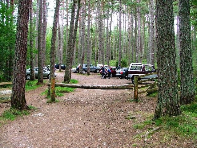 Green Trail Car Park, Loch Garten - geograph.org.uk - 234110