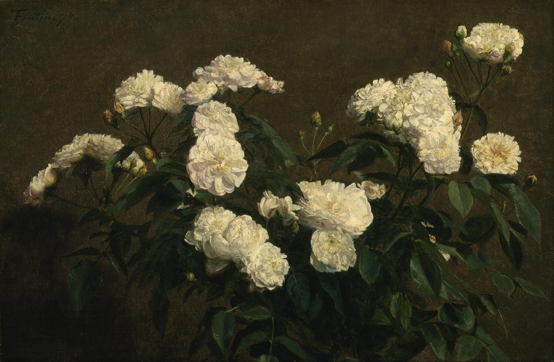 file henri fantin latour still life of white roses google art. Black Bedroom Furniture Sets. Home Design Ideas