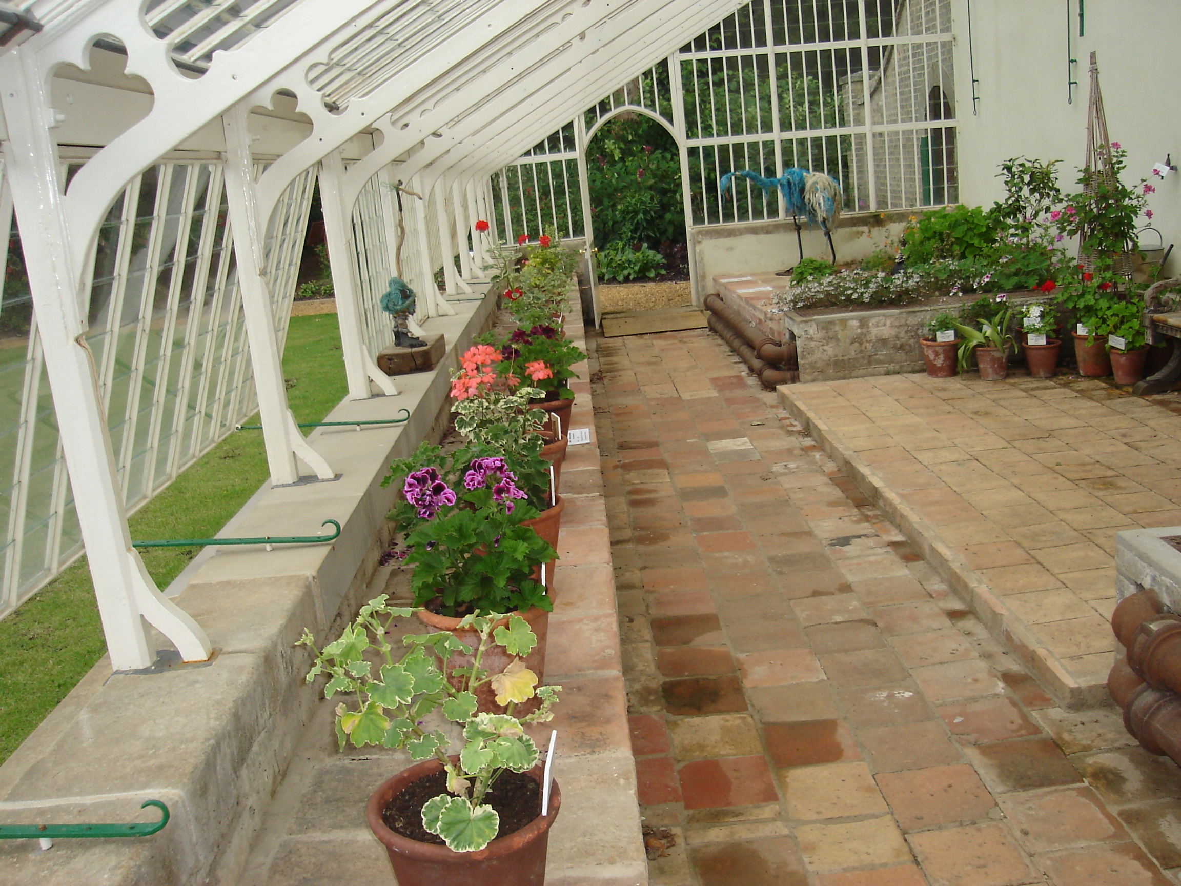File:Hoveton Hall Gardens Greenhouse Interior.JPG - Wikimedia Commons