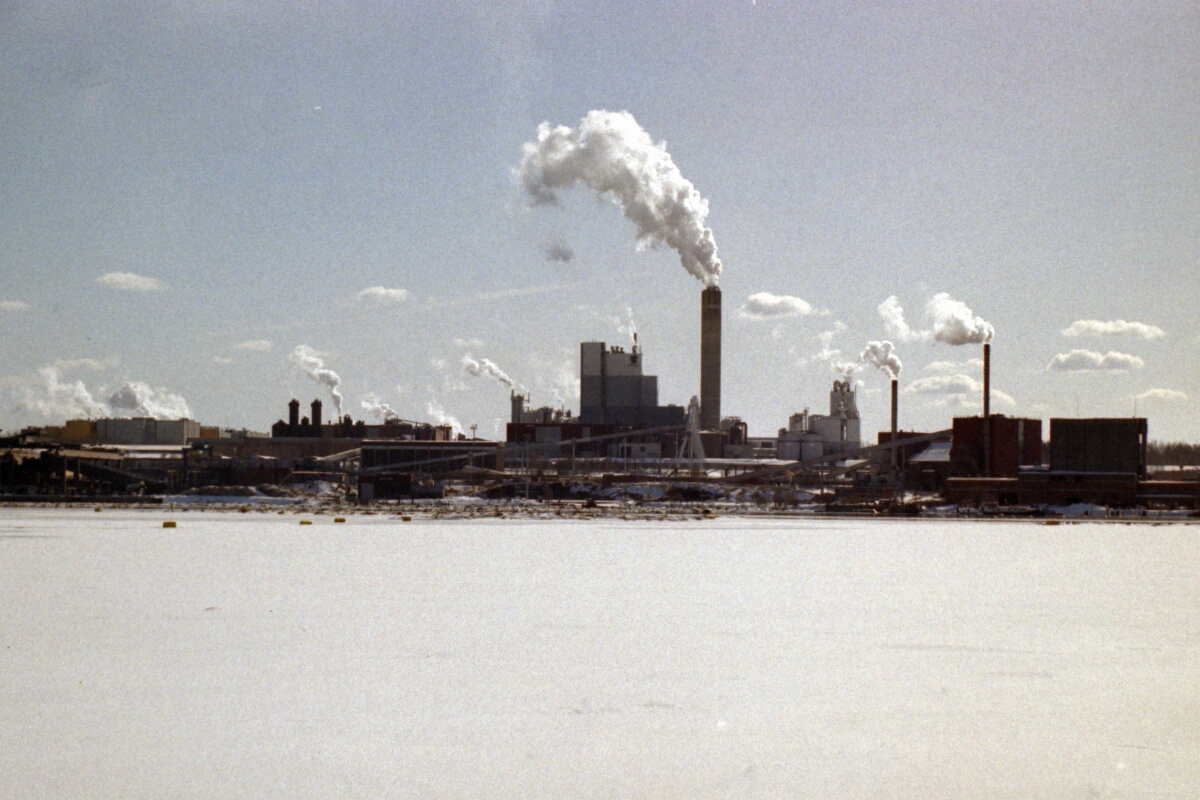Term paper mills