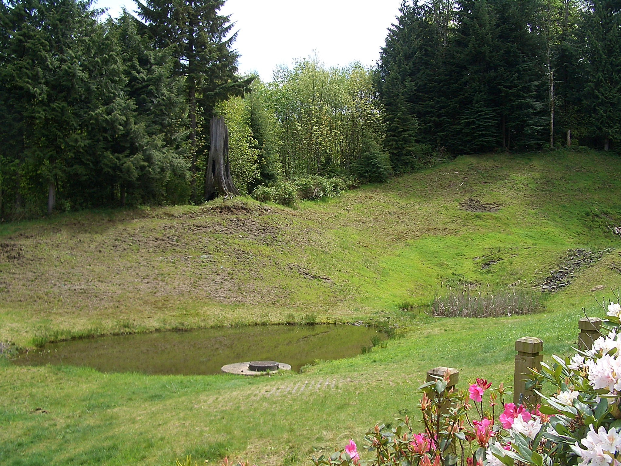 File north bend uplands runoff pond wikimedia for Design of water harvesting pond