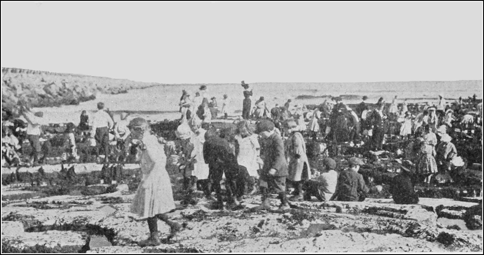 PSM V84 D347 Children collecting at the seaside.jpg