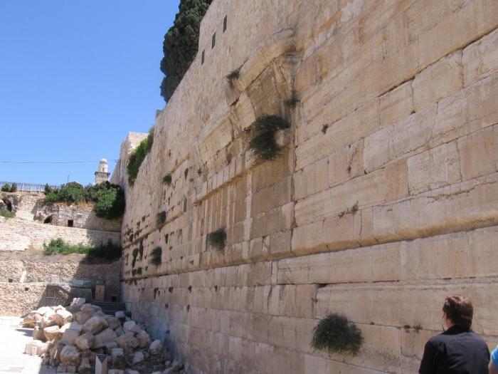 מרכז דוידסון בירושלים