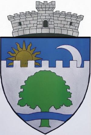 File Rou Cv Aita Mare Coa Jpg Wikimedia Commons