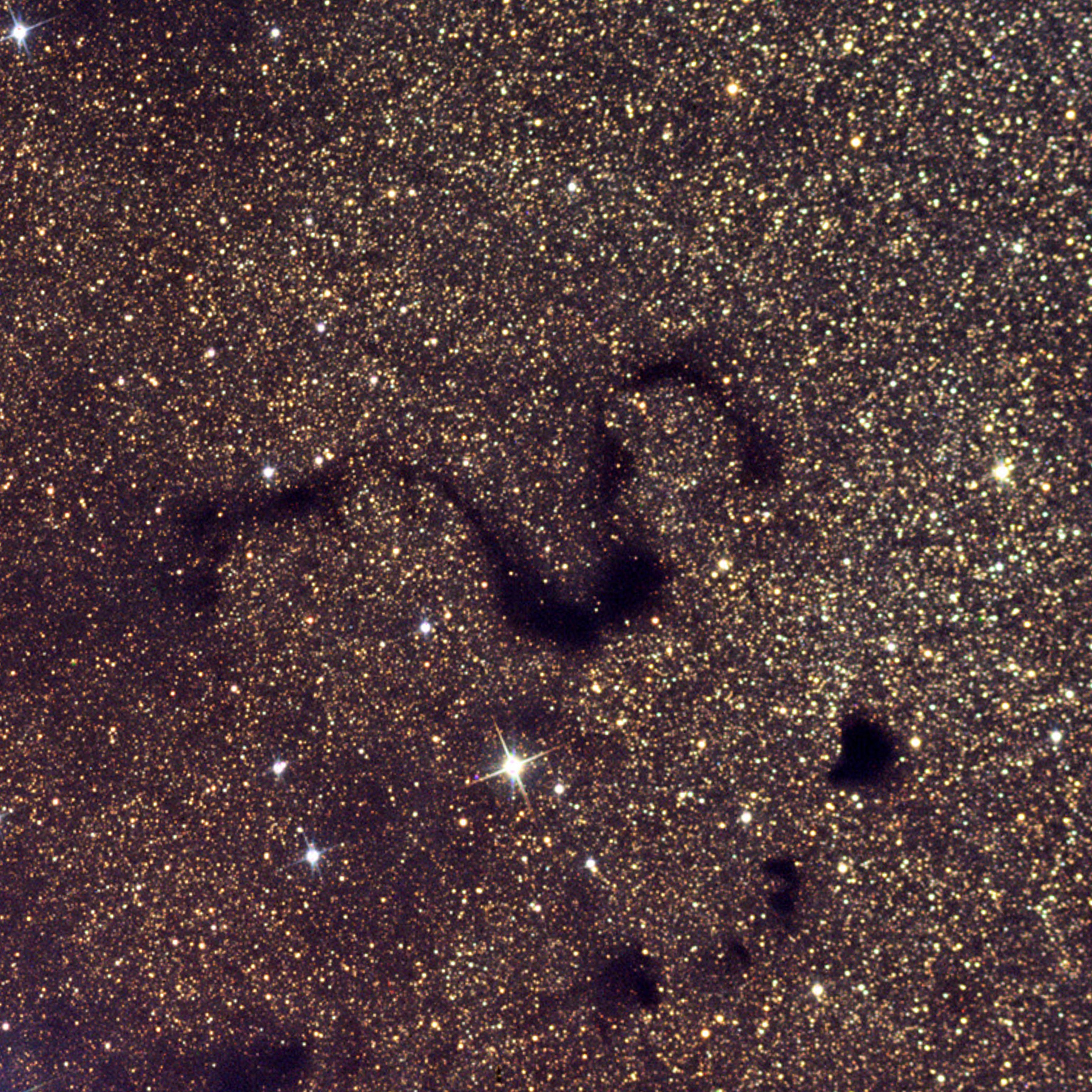 Snake Nebula.jpg