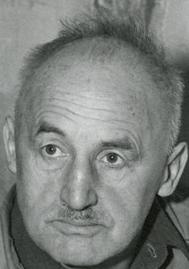 Julius Streicher Wikipedia