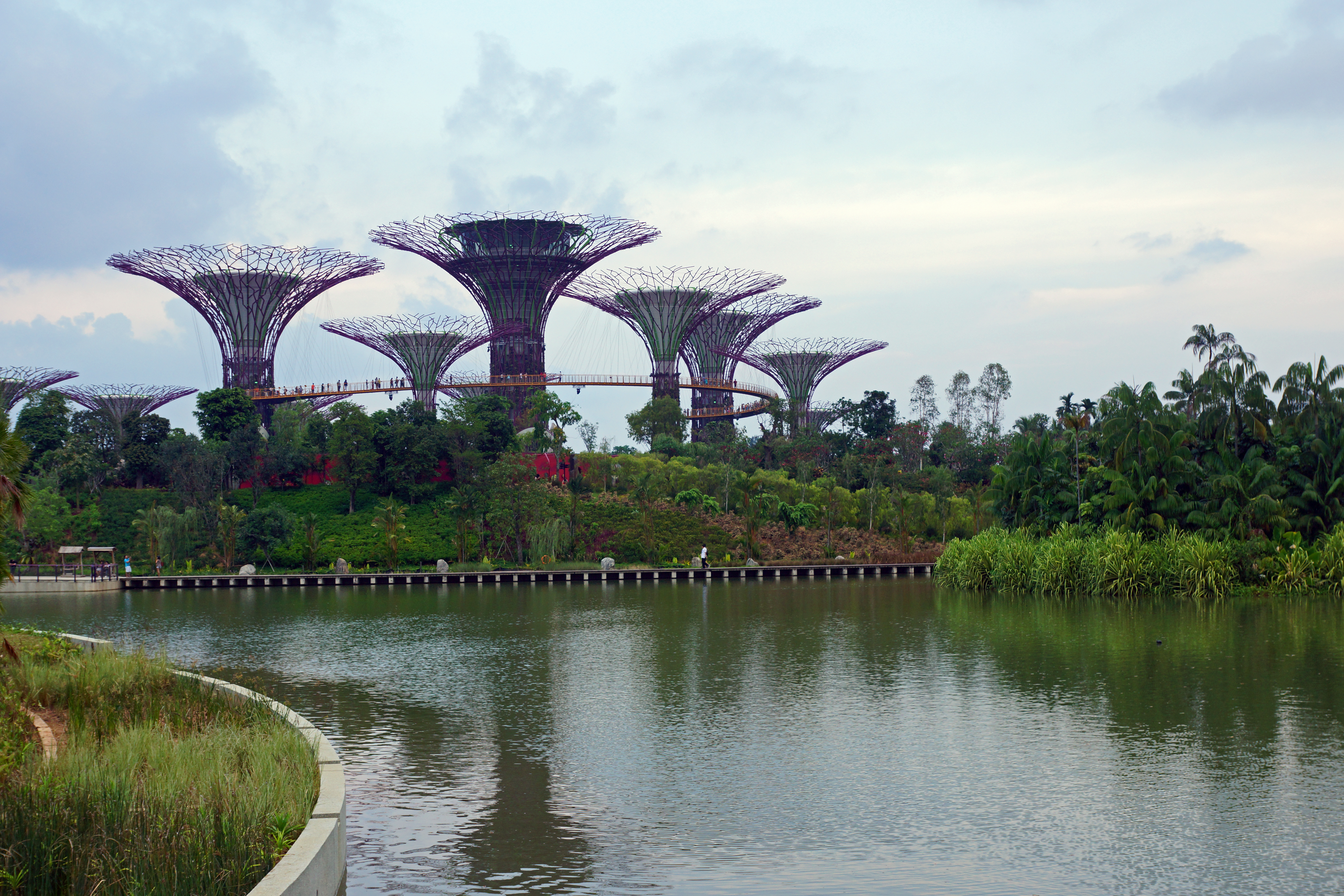 Garden By The Bay Water Park file:supertree grove and dragonfly lake, gardensthe bay