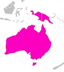 Tachyglossus aculeatus distribution.png