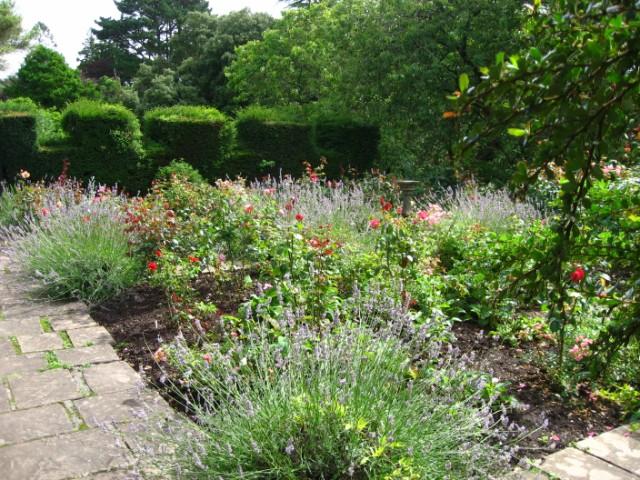 File:Upton Castle Rose Garden - geograph.org.uk - 922526.jpg ...