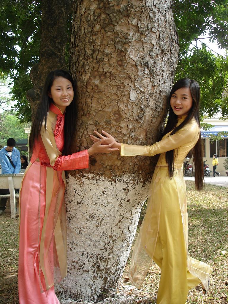 چۈشەندۈرۈش 2 girls in aodai and a tree