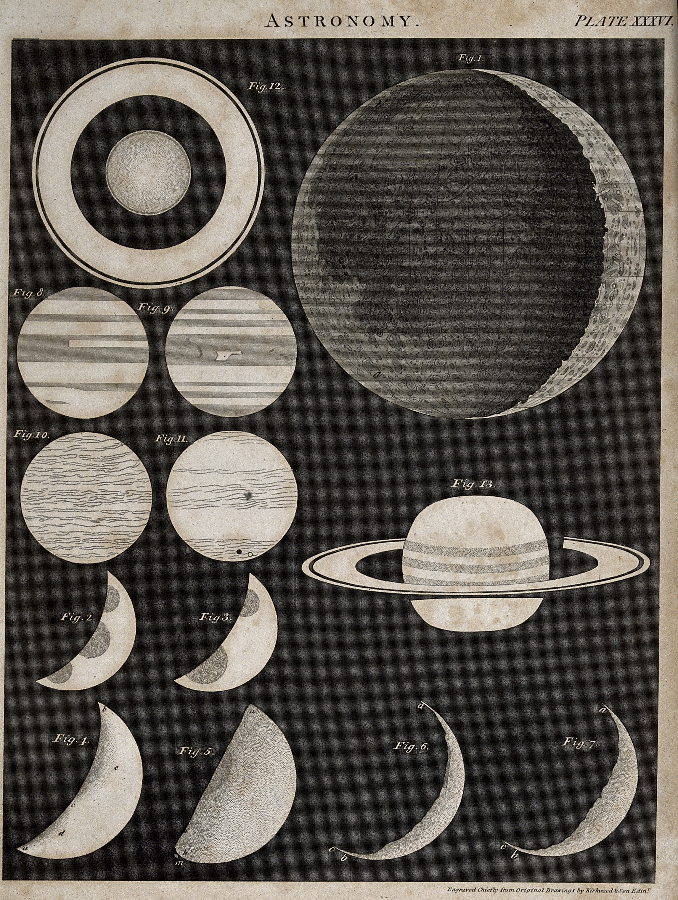 Moon Phases Chart: Astronomy; a diagram of the phases of the moon and the ring ,Chart