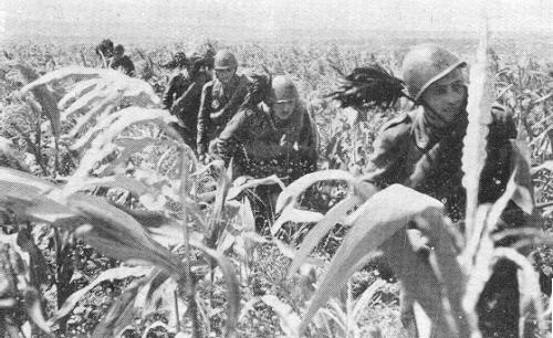 イタリア・ロシア戦域軍 - Wikiw...