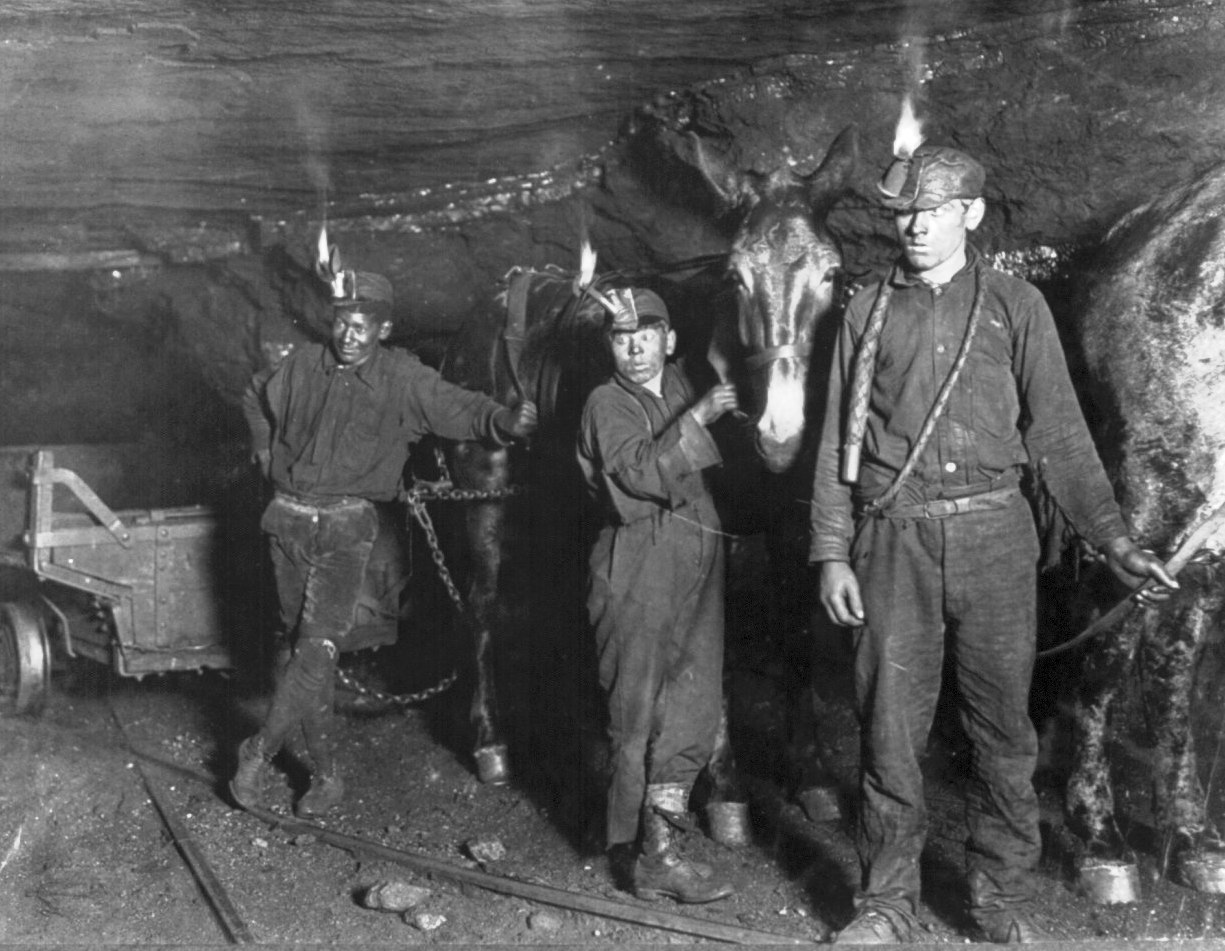Child coal miners - drivers and mules, Gary, West Virginia mine, 1908