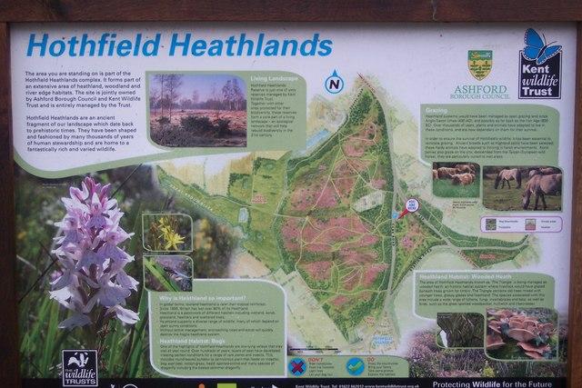 Close-up of Hothfield Heathland Information Board - geograph.org.uk - 1600947
