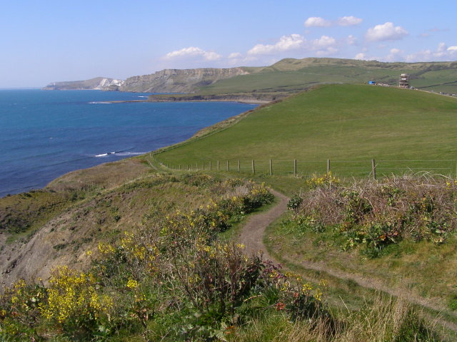 Coast path east from Cuddle - geograph.org.uk - 768429