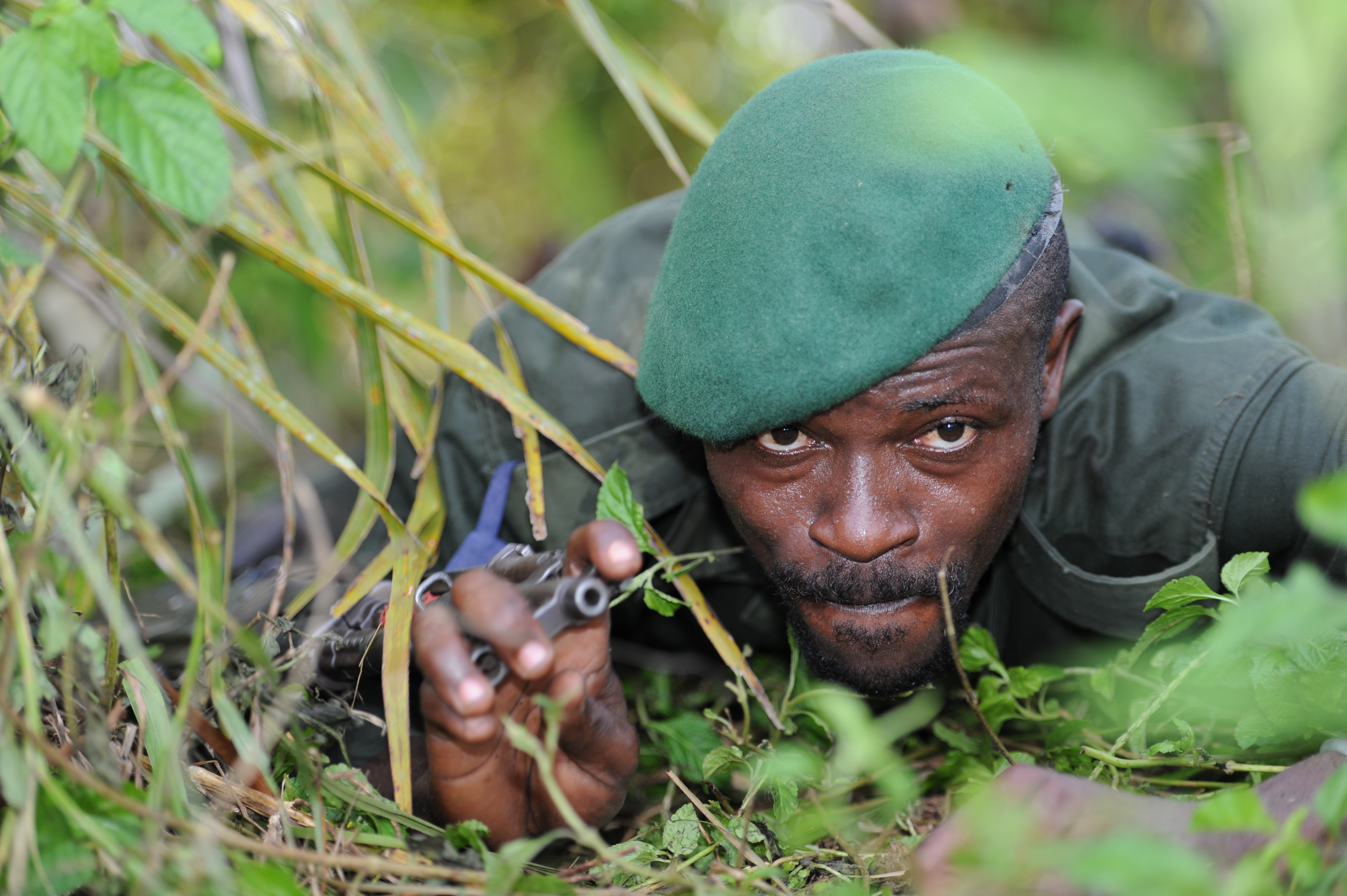 file congolese army forces sgt  solobanga  alpha team