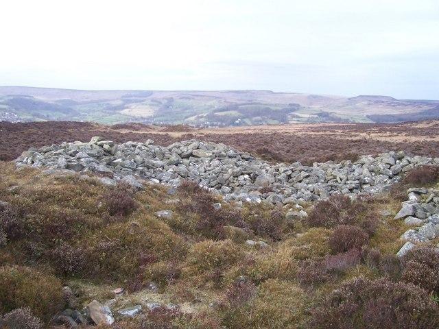 Eyam Moor cairn - geograph.org.uk - 1220616