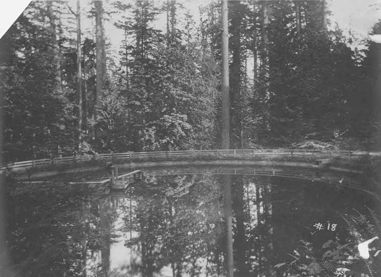 English Fenced pond in a Forest near Port Gamble, Washington
