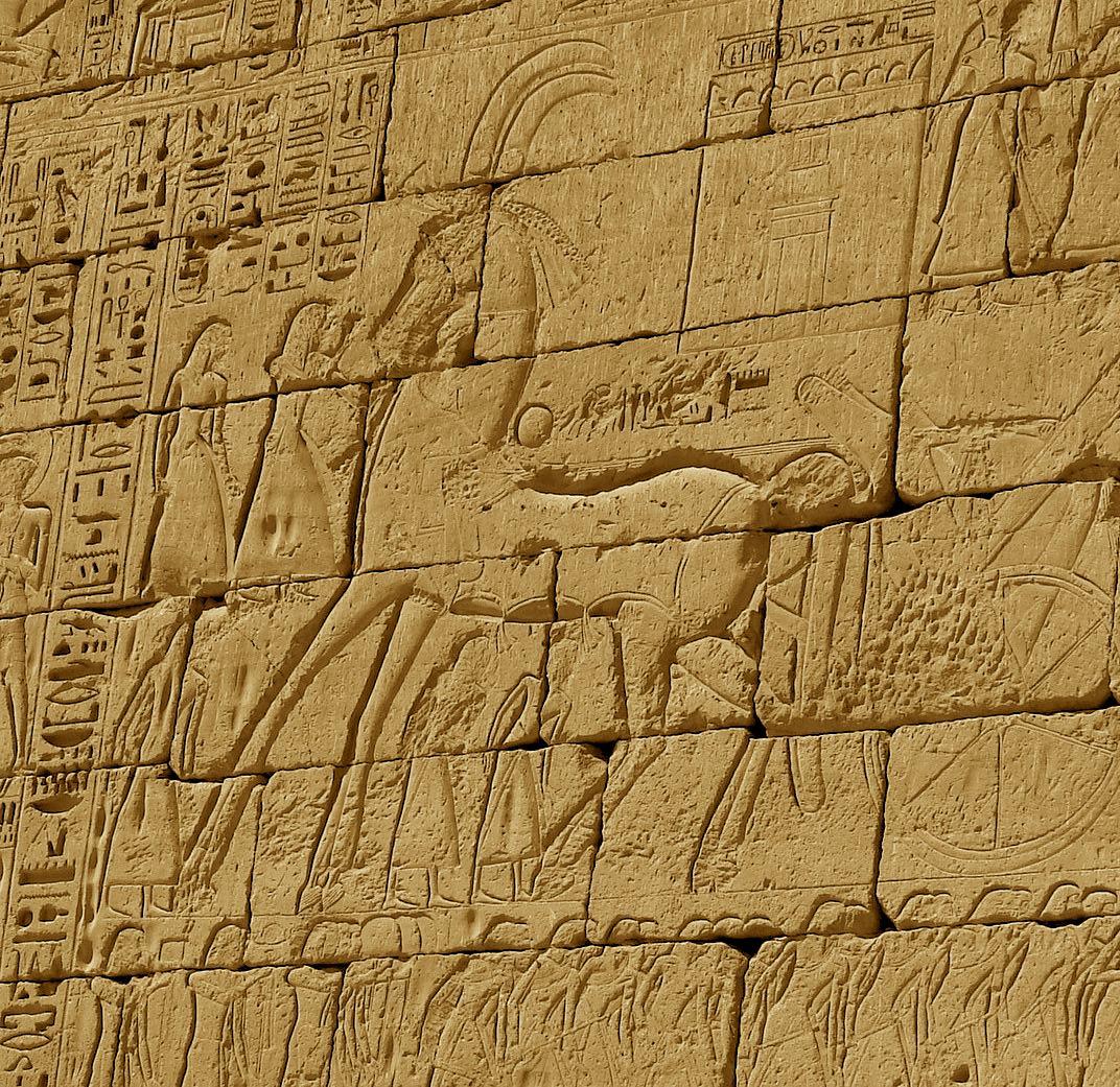 cheval dans l201gypte antique � wikip233dia