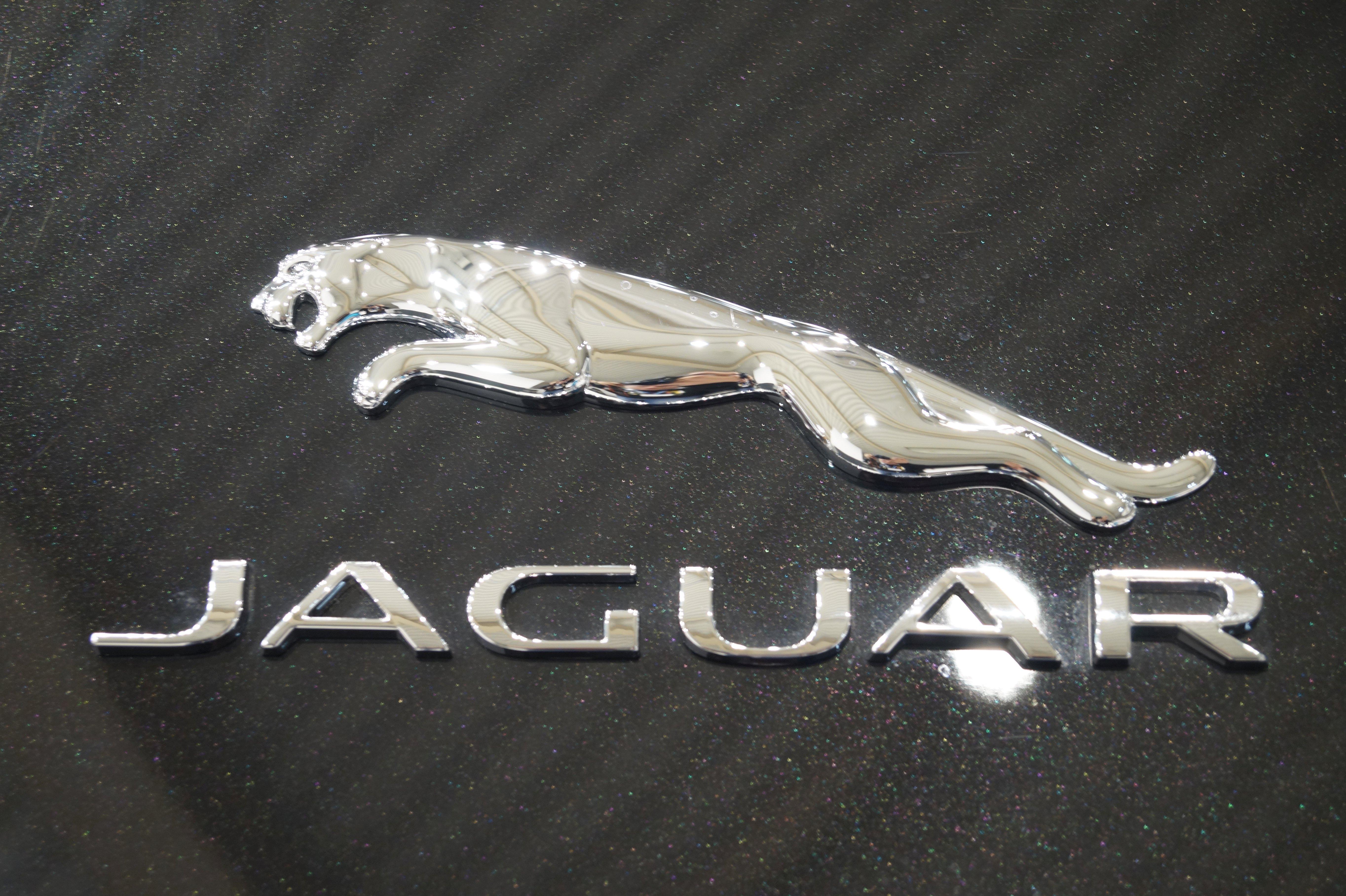 file jaguar logo msp16 jpg wikimedia commons