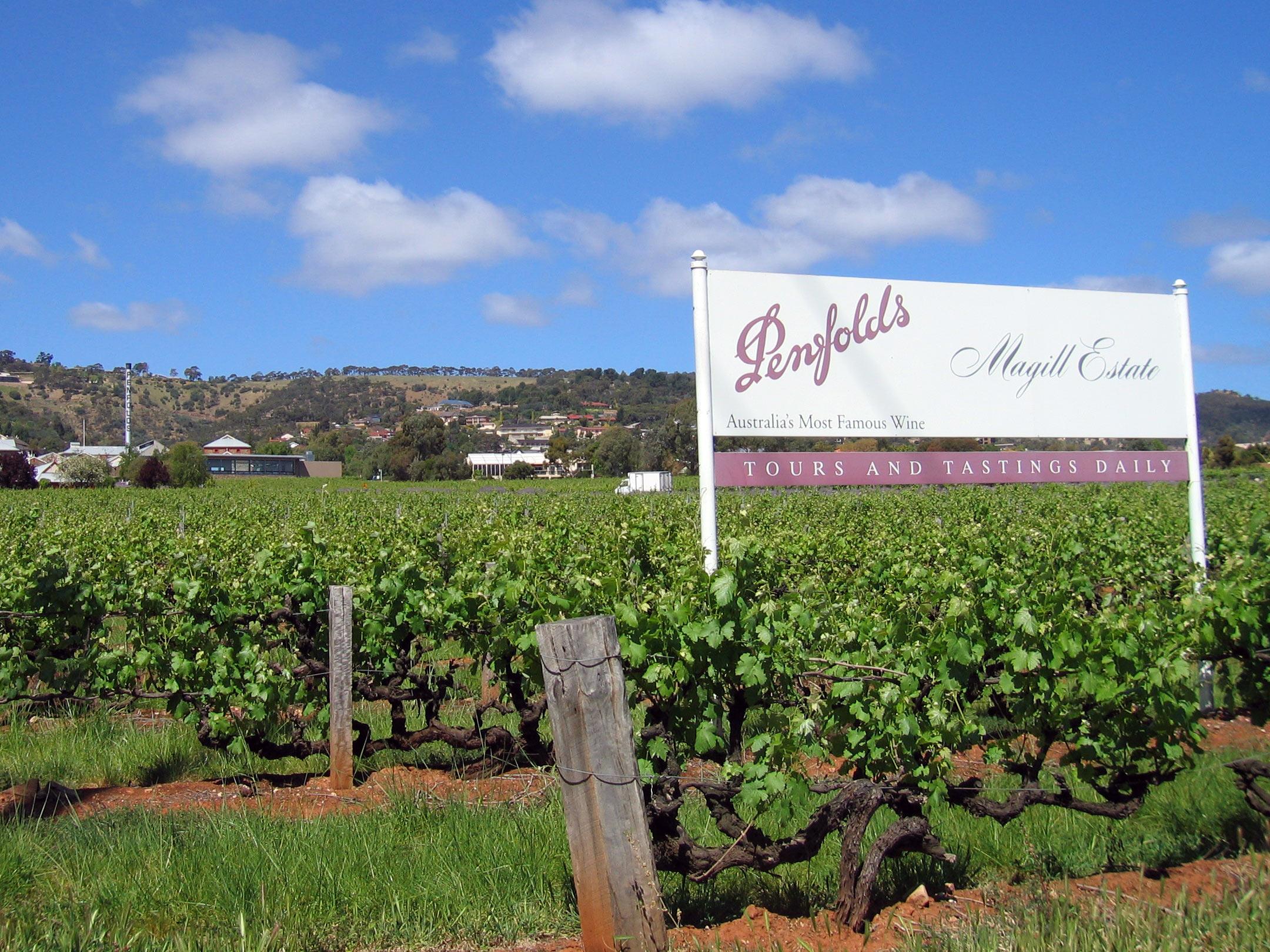 Bellevue hill bottle shop winery penfolds for Topsoil adelaide