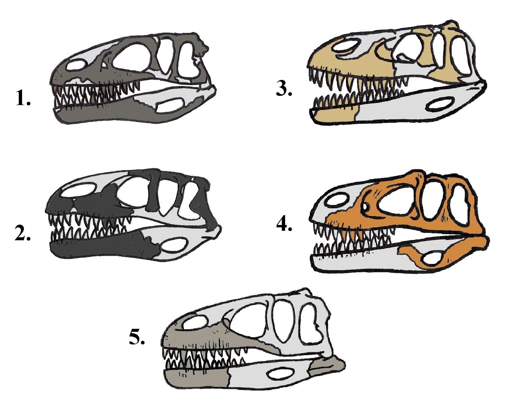 Megalosauridae