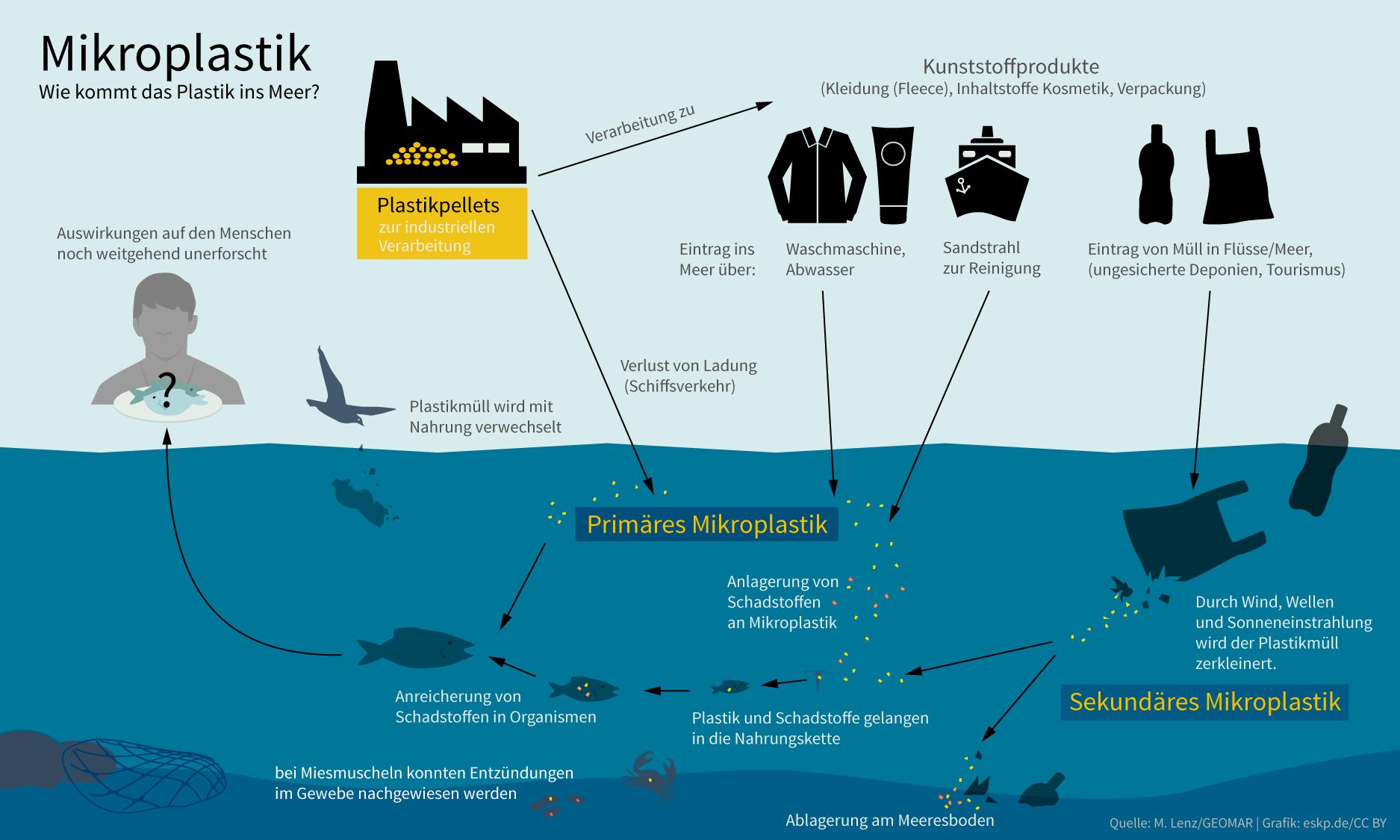 Verführerisch Plastikteppich Foto Von Wie Kommt Das Plastik Ins Meer? Einträge