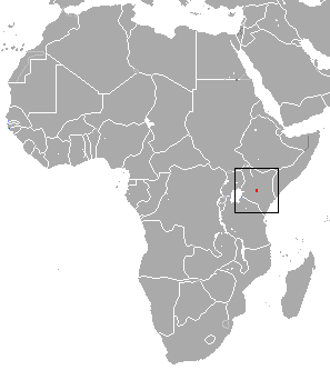Mount kenya mole shrew wikipedia gumiabroncs Images