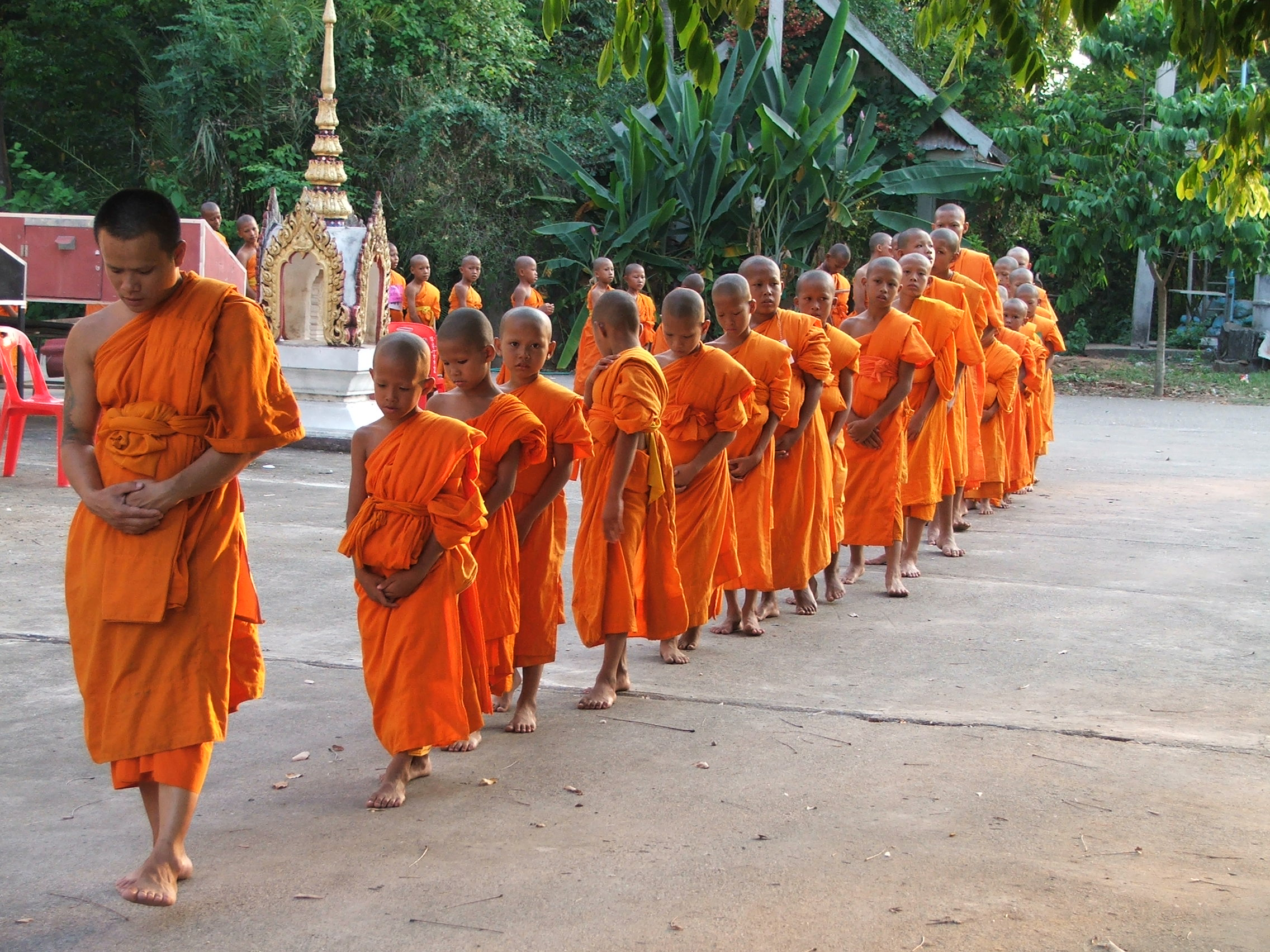 file novice in the buddhist religion faculty is walking back and