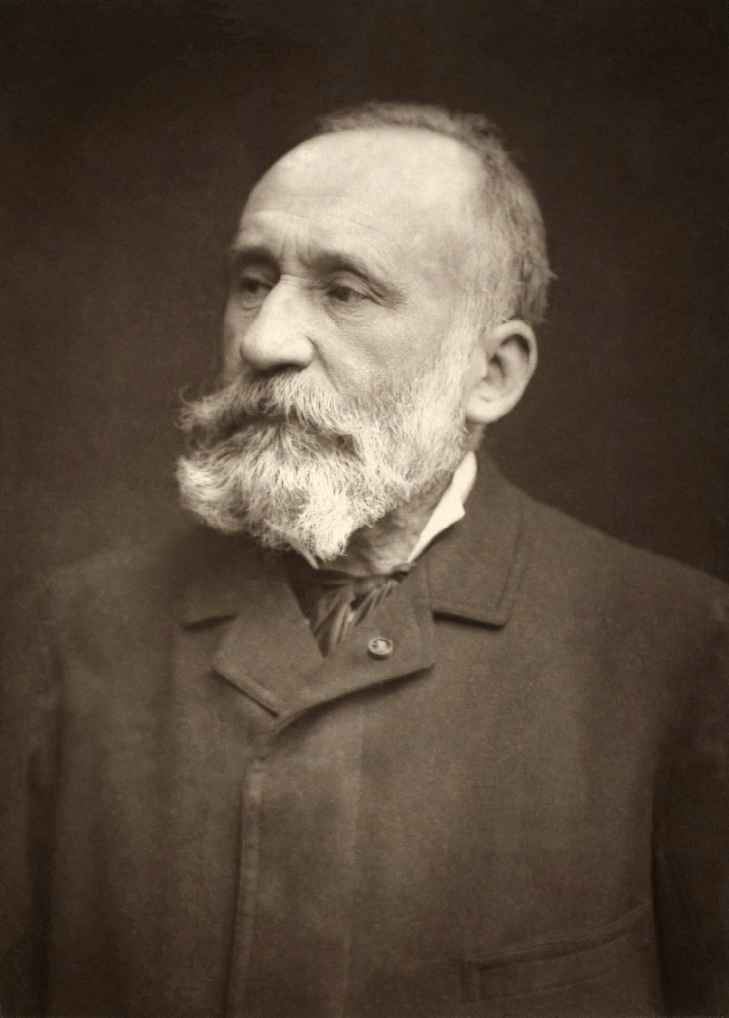 ピエール・ピュヴィス・ド・シャヴァンヌの画像 p1_8