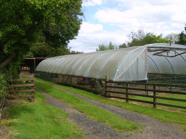 Plastic covered barn - geograph.org.uk - 450580.jpg