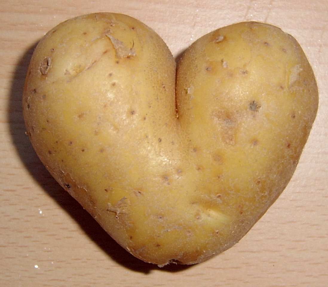 http://upload.wikimedia.org/wikipedia/commons/4/4c/Potato_heart_mutation.jpg