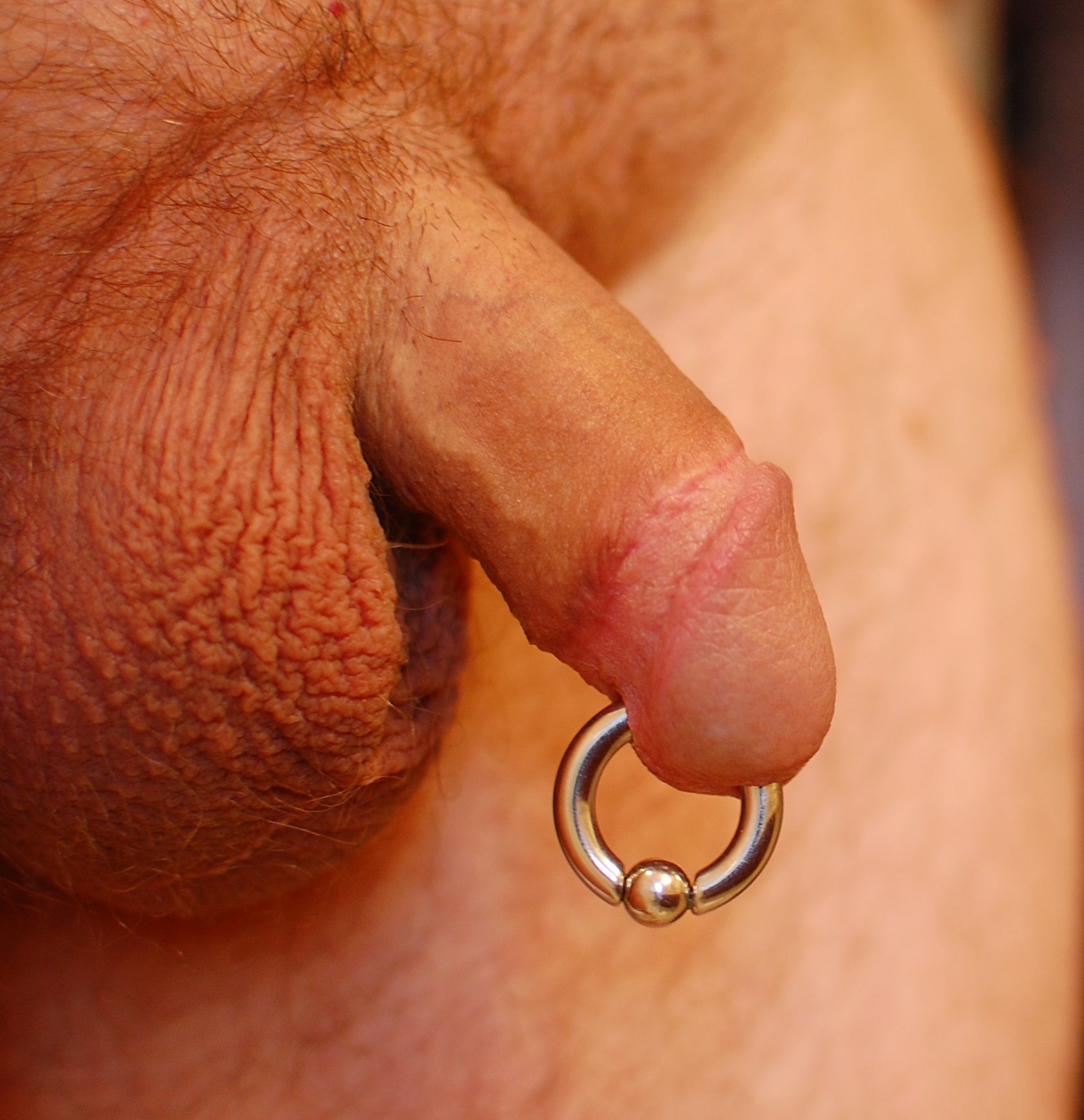 Sex with a prince albert piercing
