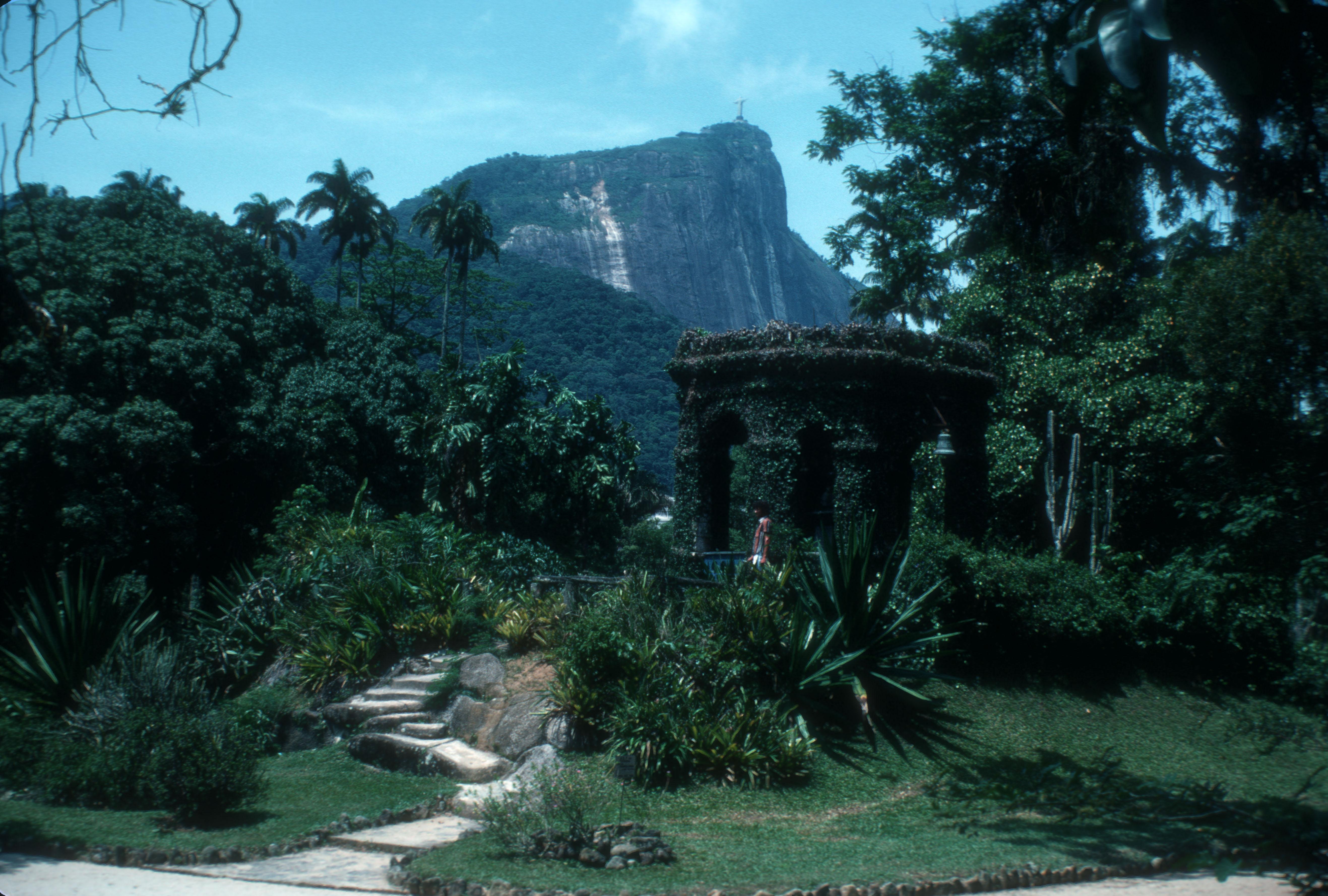 File Rio Botanical Garden Rio De Wikimedia