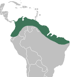 Selenipedium - Distribution