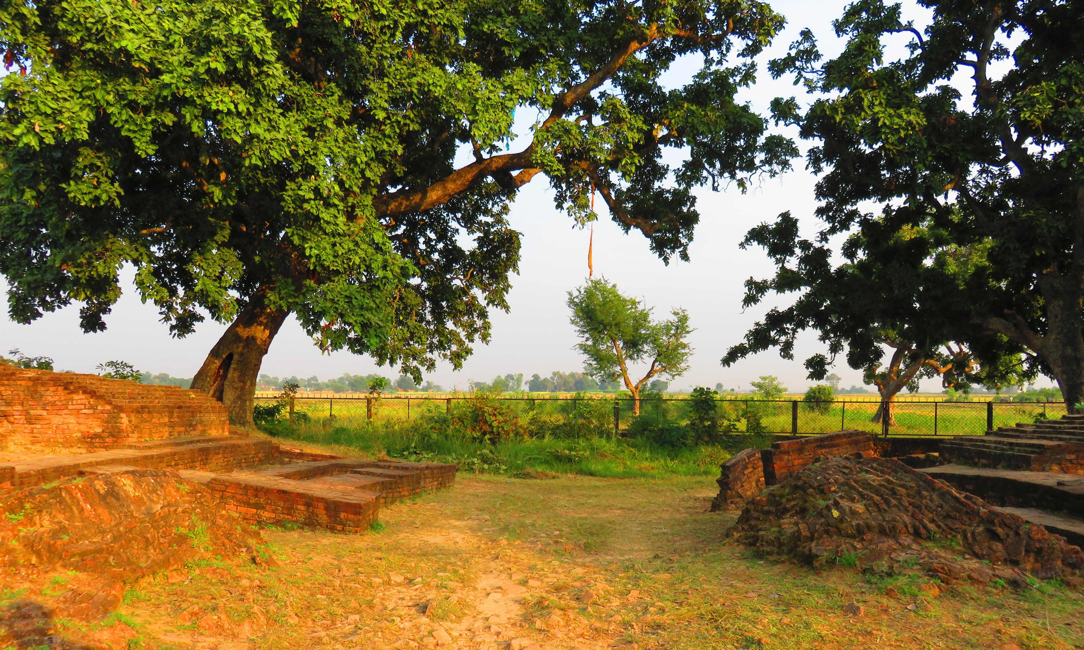 Suddhodana Palace-east gate.JPG