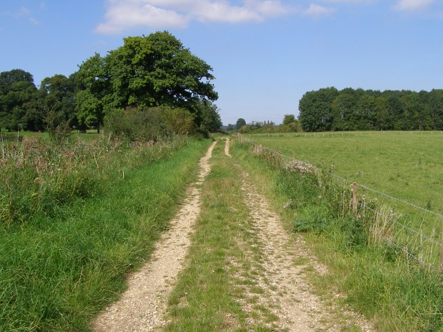 Test Way footpath near Town Copse - geograph.org.uk - 539720