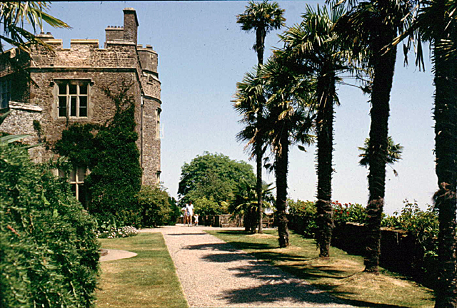 The terrace at Dunster Castle - geograph.org.uk - 895918